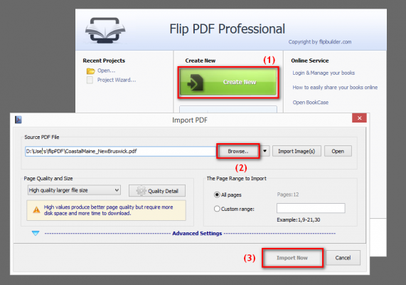 Import your PDF file