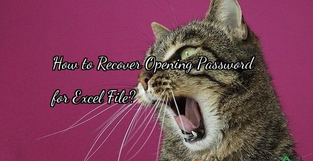 How to Recover Opening Password   for Excel File?