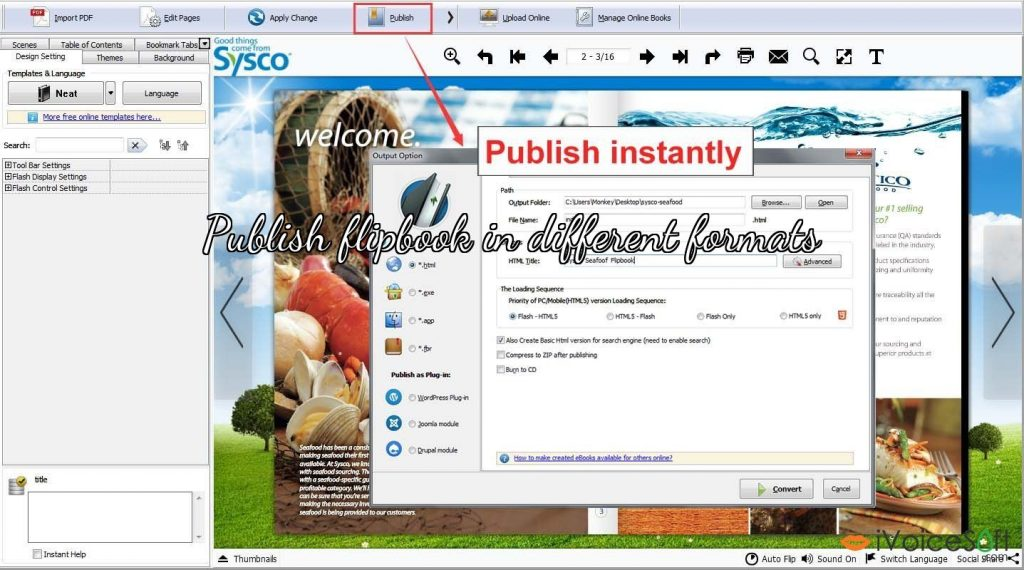Publish flipbook in different formats